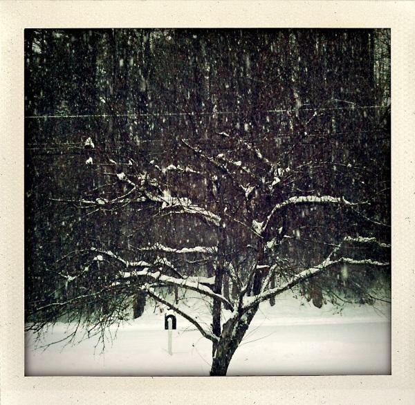 Snow and Rain Continues - VT vs. CT / Head south? NO.